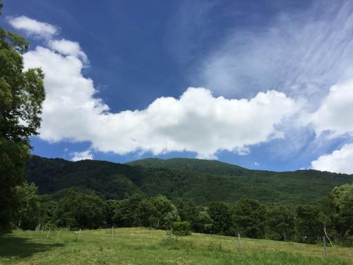 笹ヶ峰遊歩道から三田原山を臨む