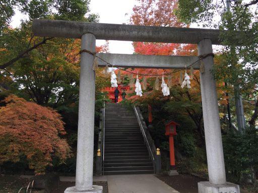 西早稲田・一陽来復で知られる穴八幡も美しく紅葉